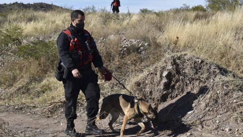 Búsqueda de Guadalupe: una perra marcó una casa y una posible mancha de sangre